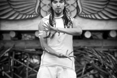 Performing @ Firefly Gathering