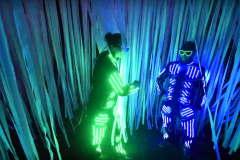 What The Festival 2016 - Illuminated Forest